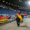 Terror in Germany as soccer match against Holland gets cancelled due to bomb threat