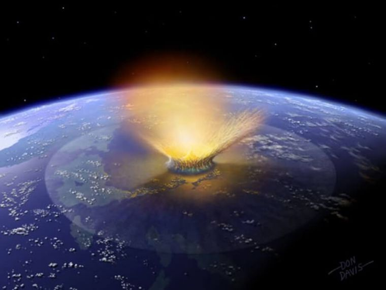 the significance of mass extinctions
