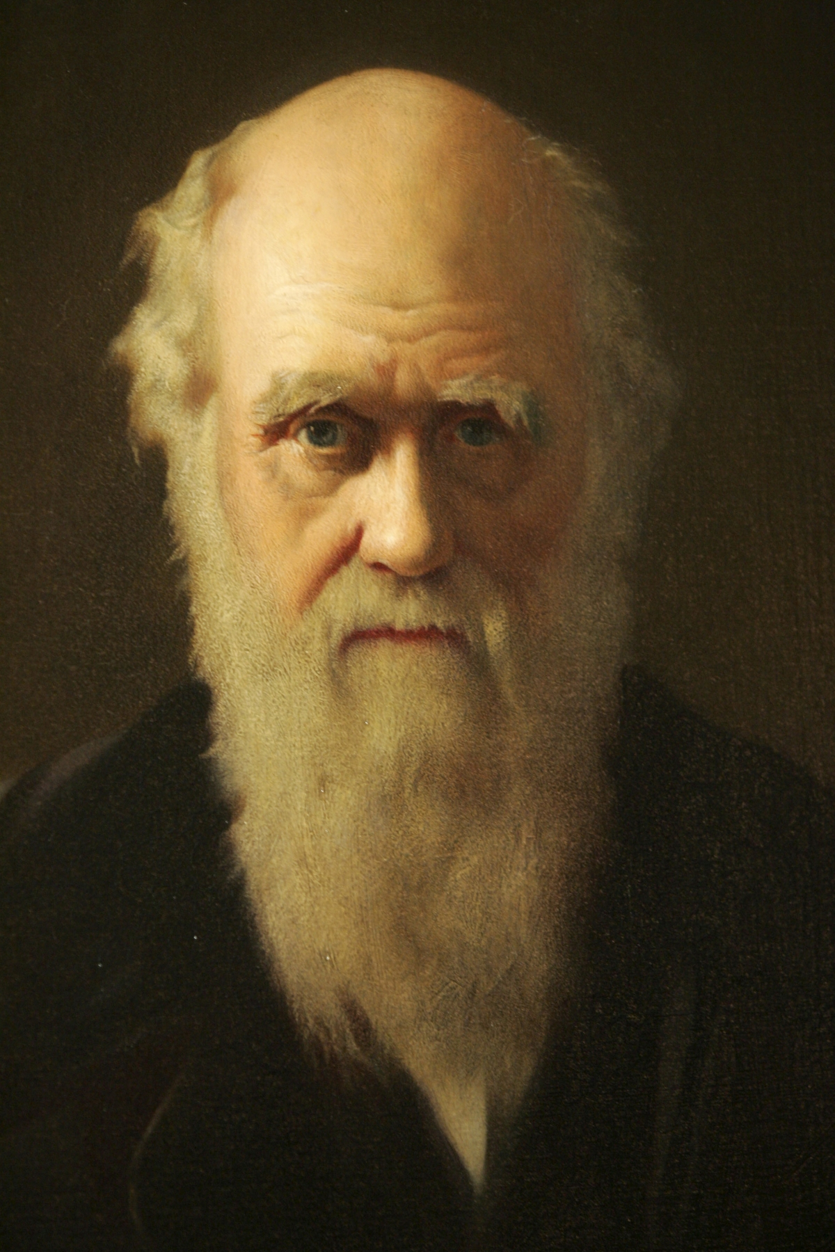an analysis of mans belief in god in the theory of evolution by charles darwin Charles darwin himself hated religious controversy  to present his theory of  evolution as an idea that was compatible with belief in god  the work of this  great man of science, farrar said, had enabled people to read 'many hitherto   as opposed to non-denominational, interpretation of the first amendment, and to  apply.
