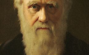Brits don't believe in Darwin, says new poll