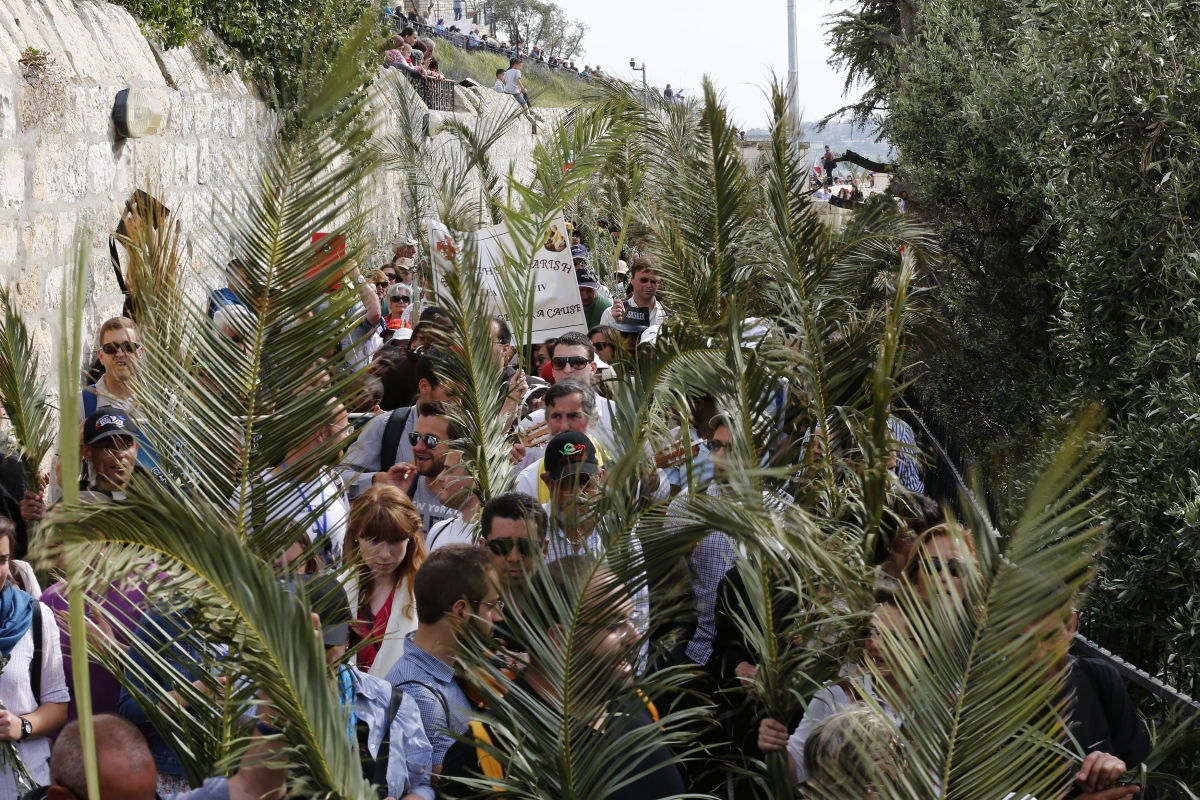 palm sunday Palm sunday definition is - the sunday before easter celebrated in commemoration of christ's triumphal entry into jerusalem the sunday before easter celebrated in commemoration of christ's triumphal entry into jerusalem.
