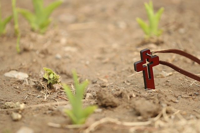 Cross beside plants