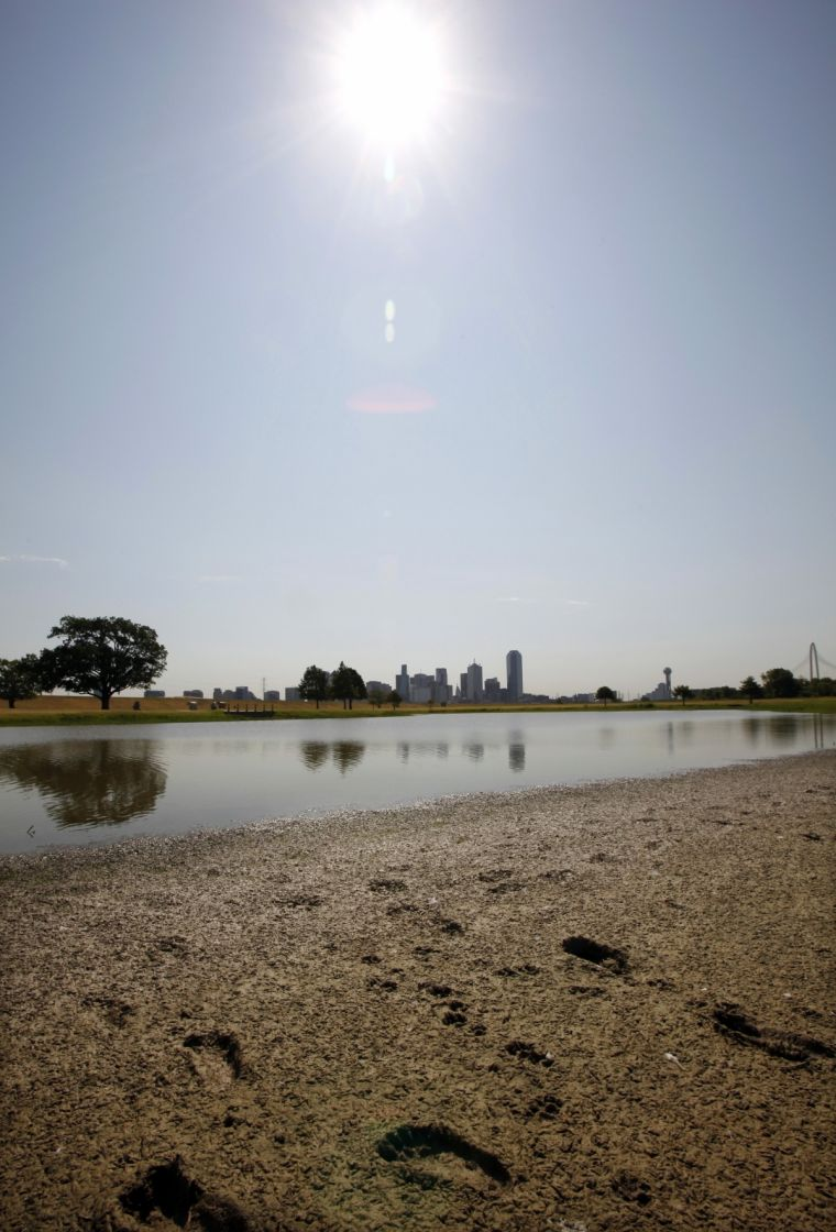 A partially dried-up pond near downtown Dallas, Texas in a previous heatwave when temperatures reached 108 Fahrenheit (42 Celsius).