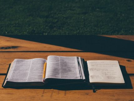 Ecclesiastes 6: Out of the shadows, into the life