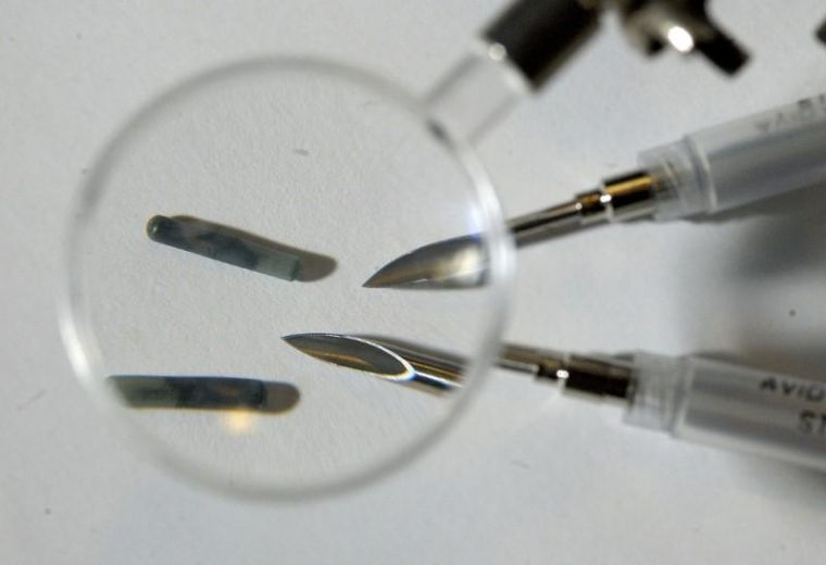 Are microchips under the skin a mark of the beast