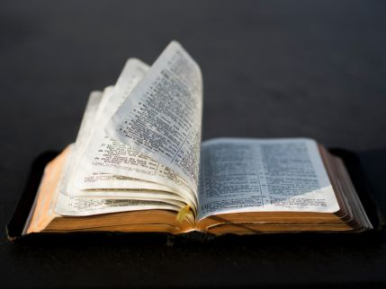 Three places to begin reading your Bible