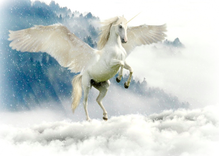 Unicorns In The Bible: Are There Really Unicorns In The Bible?
