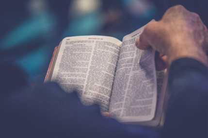 From Adam to Apocalypse: How making the Bible shorter might encourage more people to read it