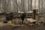 Woods 'exploded': California pastor tells of surviving deadly Camp Fire by sheltering in church