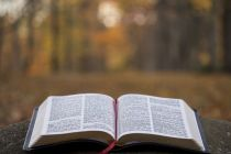 Danish Bible Society responds to criticism over new translation