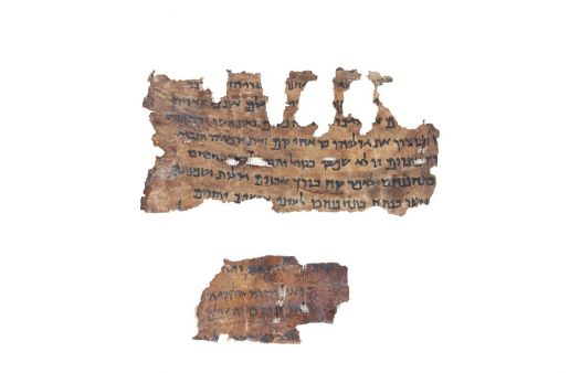 Dead Sea Scrolls and DNA: what the latest research tells us