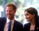 Harry and Meghan expecting first baby next year